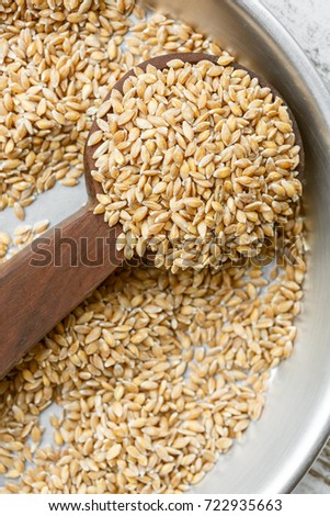 Enkir or Einkorn, the oldest cereal in the world #722935663