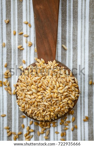 Enkir or Einkorn, the oldest cereal in the world #722935666