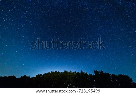 Starry sky over the forest. #723195499