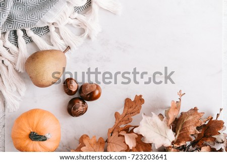 Fall season flatlay in pastel colors for fashion and beauty, lifestyle bloggers, announcements, ads. Wool scarf with fringe, dry leaves, acorns, little pumpkin, pear. Copy space  #723203641