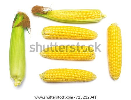 Corn with skin or without skin isolated on white background. A collection of corn. Flat lay, top view #723212341