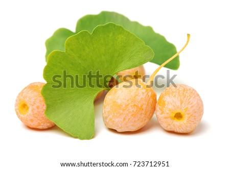 Ginkgo Biloba fruits on white background #723712951