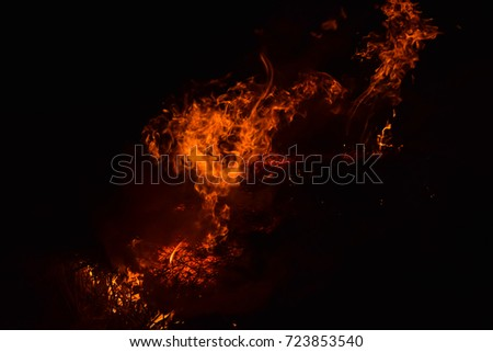 Fire. Burning of rice straw at night. Red fire on a black background. Combustion.