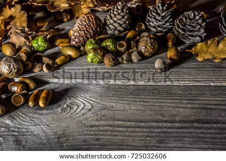 Forest autumn still life on a wooden background #725032606