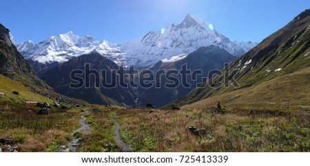 Way to Annapurna Base camp, mountain meadows and snow capped Himalayas, Mount Machapuchare, Fishtail mountain #725413339