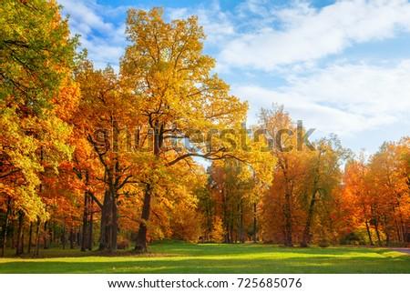 Autumn landscape #725685076
