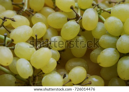 sweet white grapes #726014476