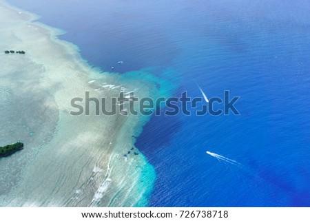 Blue Corner Palau, Best Diving/ Snorkelling, Diving with Sharks, Best of Pacific Islands, Blue Holes, Ngemelis, Pacific Ocean- Micronesia #726738718
