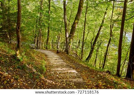 Stairway in a mountain park, Sigulda, Latvia #727118176