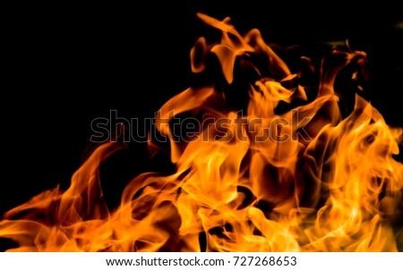fire flames on a black background #727268653