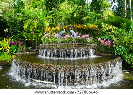 Singapore Botanic Gardens - UNESCO World Heritage Site Royalty-Free Stock Photo #727806646
