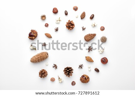 Autumn composition, frame made of pine cones, acorns and chestnuts. Flat lay, top view. #727891612