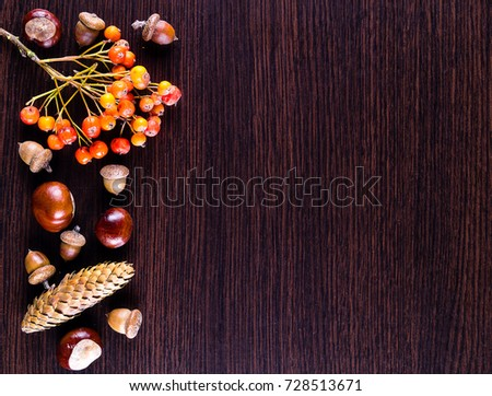 Autumn background. Chestnuts, acorns, ashberry on a dark wooden background at top view. #728513671