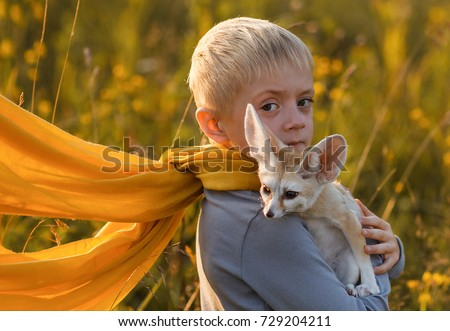 A boy in the image of the Little Prince Antoine Exupery holds a fox in his hands. Fennec tame. A child in a yellow scarf  look at the camera. Fox. Fennecus zerda. Le Petit Prince
