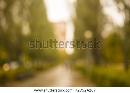 background of blurred yellow leaves in the park #729524287