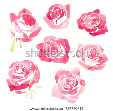 Collection of hand drawn pink watercolor roses