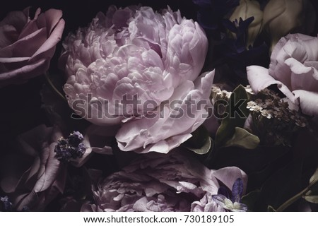 bouquet of pink peonies, dark background. Royalty-Free Stock Photo #730189105