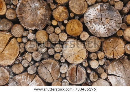 Stacked tree trunks detail. Finland lumber industry. Nature background. Horizontal #730485196