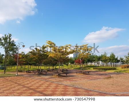autumn at seoul,korea #730547998