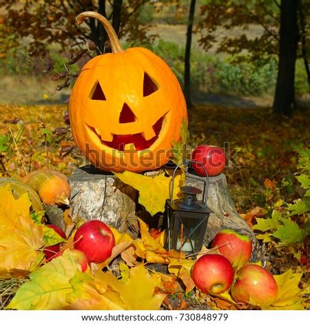 pumpkin-head against a background of an autumn forest #730848979