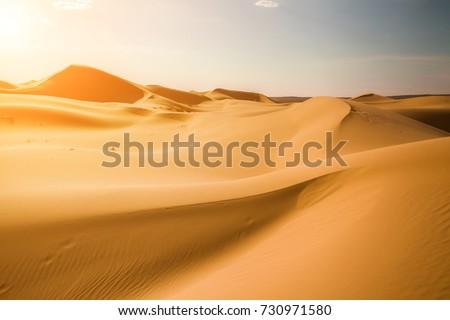 Beautiful sunset in the Sahara desert. Sand dunes at sunset #730971580