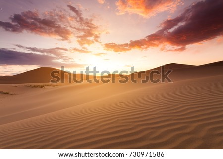 Beautiful sunset in the Sahara desert. Sand dunes at sunset #730971586