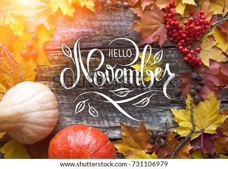 """Great season texture with fall mood. Nature november background with hand lettering """"Hello November"""". Royalty-Free Stock Photo #731106979"""