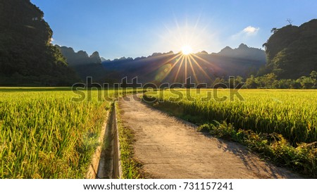 Under the sun #731157241