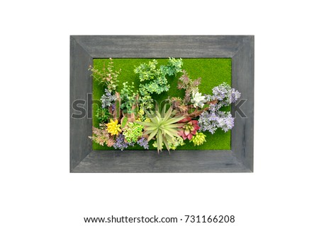 Picture frame plastic flowers on white background #731166208