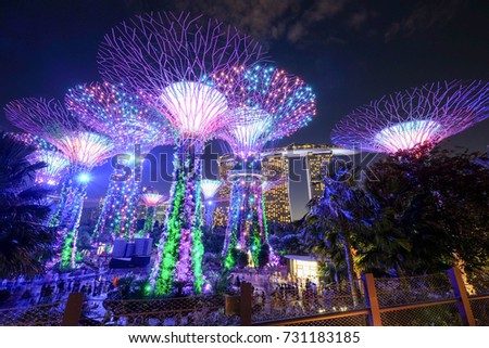 SINGAPORE - JULY 1, 2017: Supertrees at Gardens by the Bay. Night light show at Supertree is main Marina Bay Sands district tourist attraction #731183185