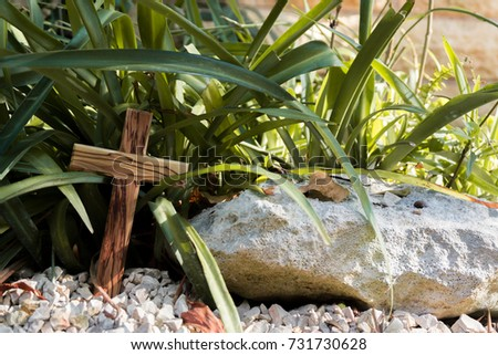 wooden cross under green plant #731730628