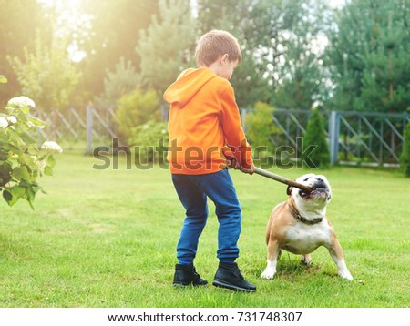 European boy playing with a bulldog. #731748307