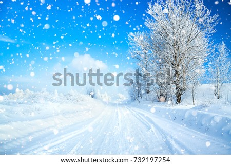winter landscape with road, forest and blue sky. wintry path. frosty sunny day. snowy winterly landscape.  #732197254