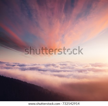 Scenic image of misty valley. Locations Carpathian national park, Ukraine, Europe. Excellent wallpapers. Explore the beauty of earth. Great picture of wild area. Drone photography. Instagram filter.