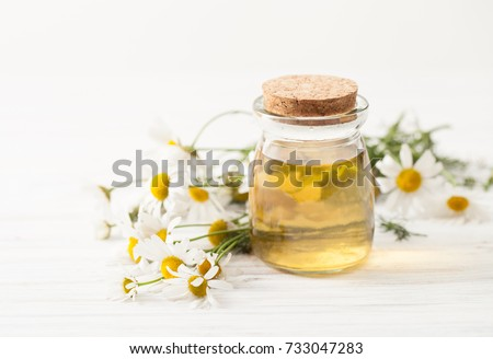 Recipes of traditional medicine with a decoction of chamomile at home. Immunity enhancement in alternative medicine. Recipes of the cosmetics with chamomile. An empty space to insert text. #733047283