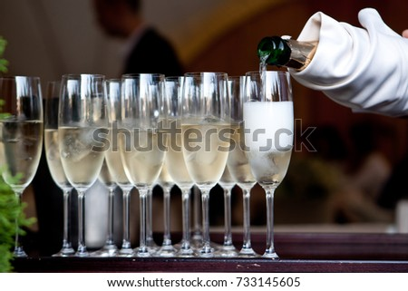 The waiter in a white glove pours the champagne into the glasses from the bottle in the restaurant. Catering service, banquet. green on the left side of the photo. official event. #733145605