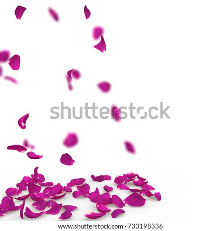 Purple rose petals fall to the floor. Isolated background #733198336