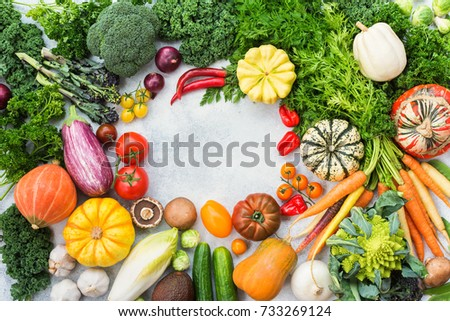 Fresh farm produce, colorful frame made of organic vegetables and herbs on light grey stone background, copy space for text in the middle, top view, selective focus #733269124