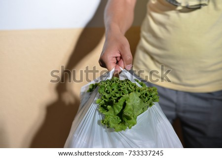 Close up on person holding bag from vegetables food market, abstract shopping background. Buyer seller business healthy lifestyle #733337245