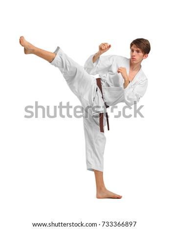 Karate. A man is performing a punch. Isolated on white background. #733366897