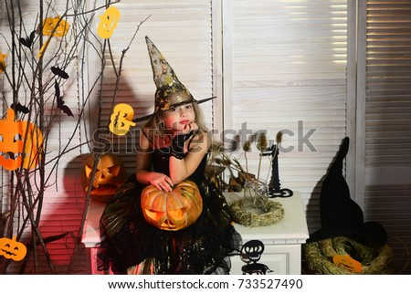 Little witch with Halloween decor. Halloween party and celebration concept. Kid in witch hat and costume holds big jack o lantern. Girl with dreamy face on spooky carnival room background #733527490