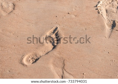 Foot track of footstep on a sandy sea beach #733794031