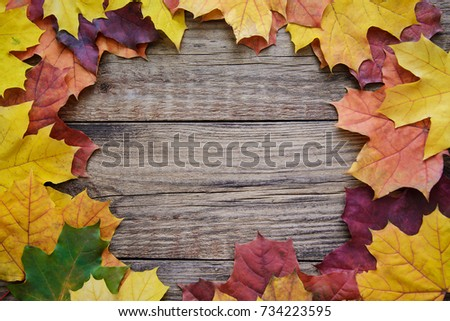 Beautiful frame of autumn red, yellow, orange leaves on wooden plank background