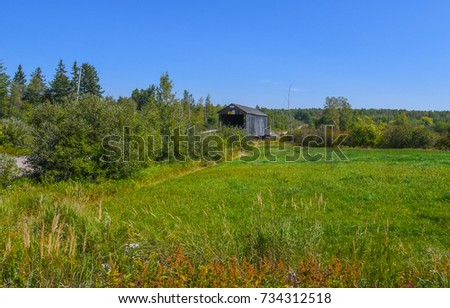 The Hoyt Station Covered Bridge in New Brunswick, Canada, with wild flowers and a meadow in the foreground #734312518
