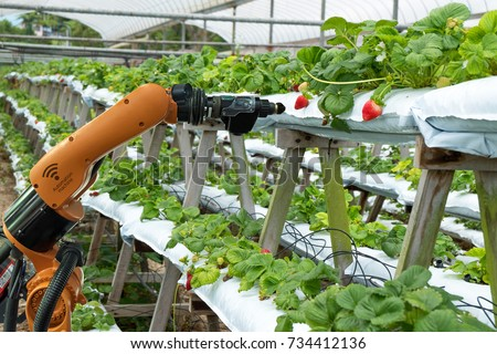 Agriculture vertical farming technology , artificial intelligence precision concepts, Farmer use smart farm automation robot assistant image processing for detection weed ,spray chemical. #734412136