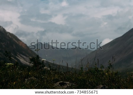 Trip tow mountains of Siberia #734855671