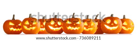 Many Halloween Pumpkins in a row isolated on white background #736089211