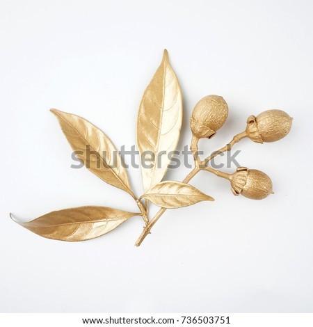 golden leaf and fruit design elements. Decoration elements for invitation, wedding cards, valentines day, greeting cards. Isolated on white background. Royalty-Free Stock Photo #736503751