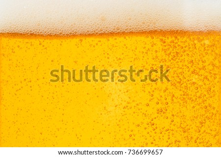 Pouring beer with bubble froth in glass for background on front view wave curve shape texture foam ,  drink alcohol celebration party holiday happy new year concept #736699657