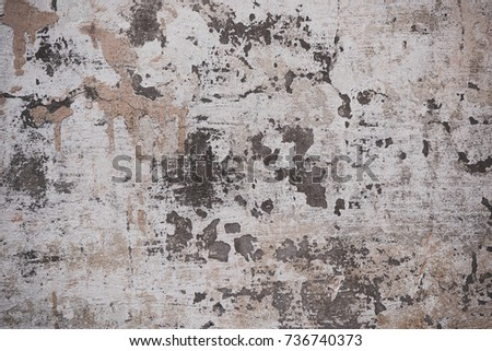 rough scratched concrete wall textured background #736740373
